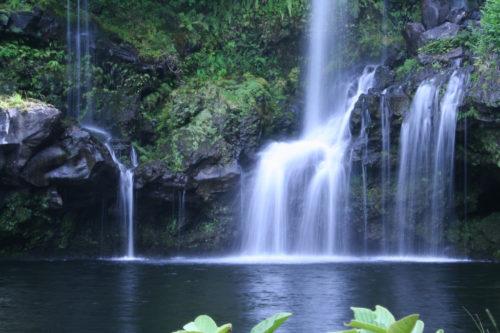 Tants veega. Õpi taastama ja kasutama vee elujõudu
